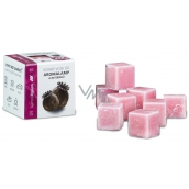 Scented wax - SECRET OPIUM 30 g, 8 cubes