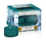 YC.kay.sv.12pcs / Icy Blue Spruce