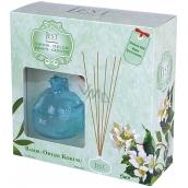 Cimen Jest Jasmine and Green Tea design aroma diffuser with natural rattan sticks for gradual release of scent 100 ml