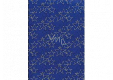 Ditipo Gift wrapping paper 70 x 200 cm Christmas blue gold and black stars