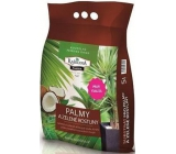 Peat Soběslav Substrate for palm and green plants 5 l