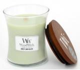 WoodWick Sweet Lime Gelato - Sladká zmrzlina vonná svíčka s dřevěným knotem a víčkem sklo malá 85 g