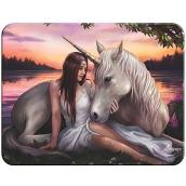 Prime3D magnet - Unicorn 9 x 7 cm