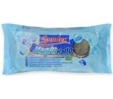 Spontex Magic Hallo detergent pad 6 pieces