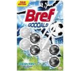 Bref Power Aktiv 2x50g Fresh Mint 4533