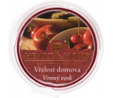 Heart & Home Warmth of home Soy natural fragrant wax 27 g