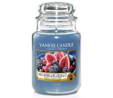 Yankee Candle Mulberry & Fig Delight - Delicious mulberry and figs scented candle Classic large glass 623 g