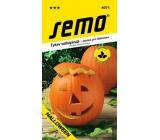 Semo Pumpkin Gigante Halloween 2 g