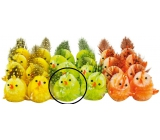Easter chicken 5 cm green 1pcs + / 24pcs in box /
