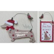 EP Line Christmas decoration, category B 1 piece