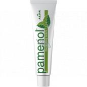 Alpa Pamenol menthol massage cream 40 g