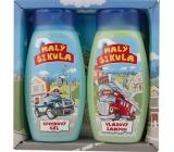 Bohemia Gifts & Cosmetics Small gel shower gel 250 ml + hair shampoo 250 ml, cosmetic set