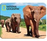 3D mafnet - African elephants 9 x 7 ml