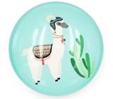 Nekupto Magnet turquoise wheel Lama, cactus 4 cm