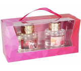 Heart & Home Spring 2020 Pomegranate + Rose with raspberries diffuser 2 x 40 ml, 2 x 6 sticks, gift set