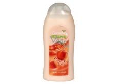 Gentelle Peach Blush kondicionér na vlasy 400 ml