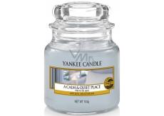 Yankee Candle A Calm & Quiet Place - Klidné a tiché místo vonná svíčka Classic malá sklo 104 g
