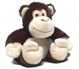 Albi Warm Plush Monkey, 25 cm × 20 cm, 750 g