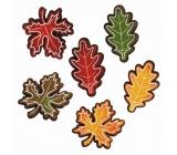 Listy z filcu s lepíkem 5 cm, 6 ks