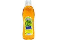 Elegance Březový šampon na vlasy 1 l