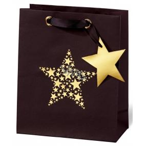 BSB Luxury gift paper bag 23 x 19 x 9 cm Christmas Star Festival VDT 417 - A5