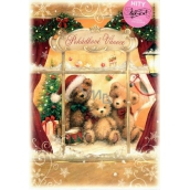 Ditipo Envelope Playing Wishes Fairy Christmas Fere Angeli by Marcely Mikova We'll Carry You a Newspaper 224 x 157 mm