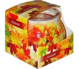 Admit Autumn - Autumn scented candle in glass 80 g