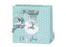 BSB Luxury Christmas gift paper bag 14,5 x 15 x 6 cm VDT 430 - CD
