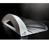 Disposable face shield, PVC / PUR, elastic