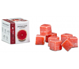 Cossack Tropical Grapefruit natural fragrant wax for aroma lamps and interiors 8 cubes 30 g