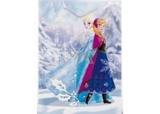 BSB Disney Gift paper bag 32.4 x 26 x 12 cm Frozen with glitter DT L