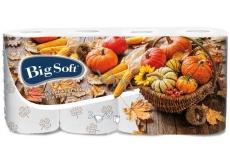 Big Soft Autumn toilet paper with print 3 ply 160 pieces 8 pieces