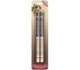 Nekupto Hobby wooden pencils Passionate traveler 2 pieces