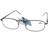 Berkeley Reading glasses +2.5 brown metal 1 piece MC2007