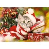 Nekupto Christmas postcard Kitten 15 x 11 cm