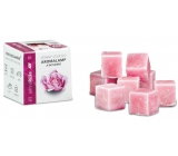 Scented wax - SOFT ROSE 30 g, 8 cubes