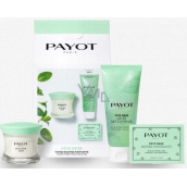 Payot Pate Grise Jour daily opaque non-greasy cleansing gel 50 ml + Nettoayante foaming gel for perfect skin 200 ml + Papiers Matifiants SOS Brillance opaque papers 50 pieces, cosmetic set 2021