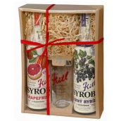 Kitl Syrob Bio Blackcurrant with pulp 500 ml + Grapefruit with pulp for homemade lemonade 500 ml + glass 200 ml, gift box