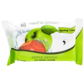 Doctor Wipes Spring Line Apple Wet Wipes 15 Pieces