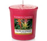 YANKEE CANDLE Votive Tropical Jungle 3822