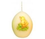 Zvířátka Kuřátko velikonoční svíčka smetanová vajíčko 54 g