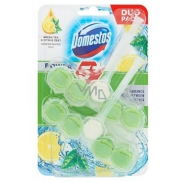 Domestos Power 5 Green Tea & Citrus toilet rigid block DUO 2 x 55 g