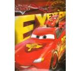 Ditipo Disney Dárková papírová taška dětská L Cars Extreme 26 x 13,7 x 32,4 cm 2902 009