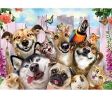 Prime3D Poster - Animal Selfie 39.5 x 29.5 cm
