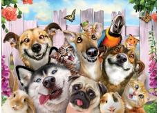 Prime3D Animal Poster - Selfie 39.5 x 29.5 cm