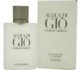 Giorgio Armani Acqua di Gio pour Homme EdT 100 ml eau de toilette Ladies
