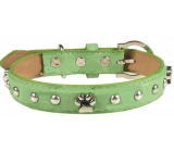 Collar Leather green decorated with paws 2.5 x 55 cm