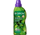 BOPON Ginkgo Yellow 500ml Green Plants 4284