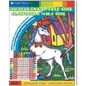 Coloring book by numbers with 10 rhinos unicorn 29 x 24 cm