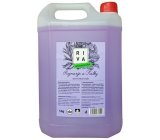 Riva Rosemary and Violets antibacterial mild liquid soap 5 kg